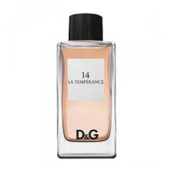 D&G Anthology La Temperance 14